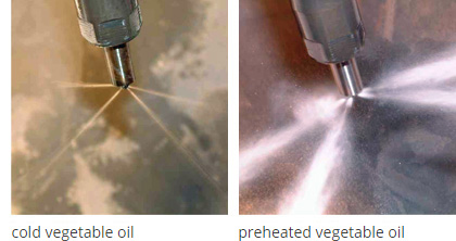 Injectors vegetable oil